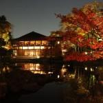 Tokugawaen Garden