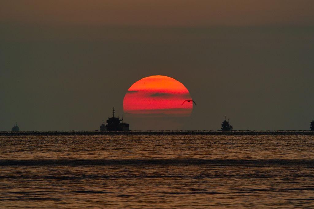 Okura Coast