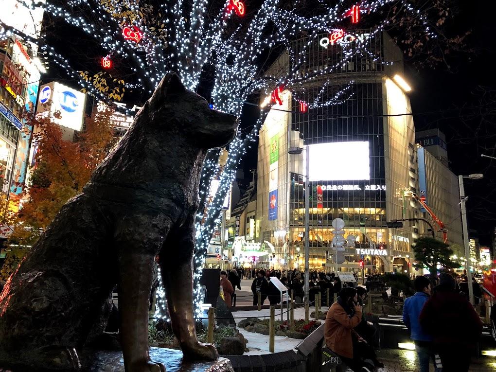 hachiko xmas lights shibuya